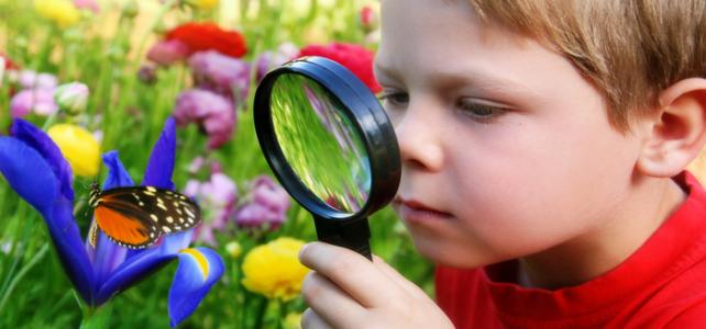 A curiosidade melhora a aprendizagem?